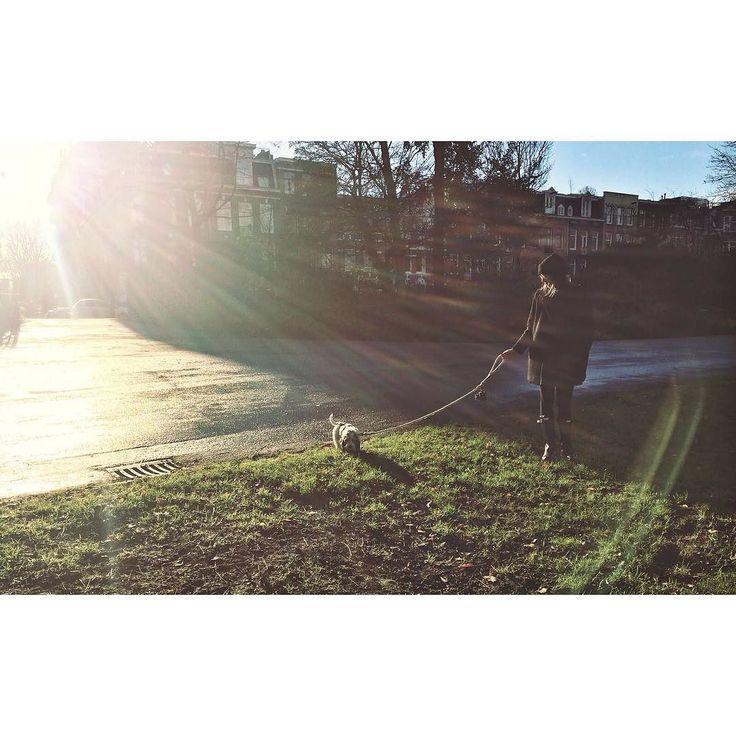C U T E N E S S | through back wednesday #pbgv #linkejoetje #puppy