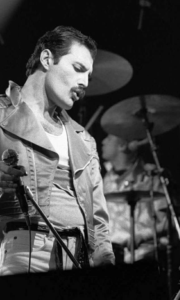 574 best images about Freddie-mercury on Pinterest | We ...
