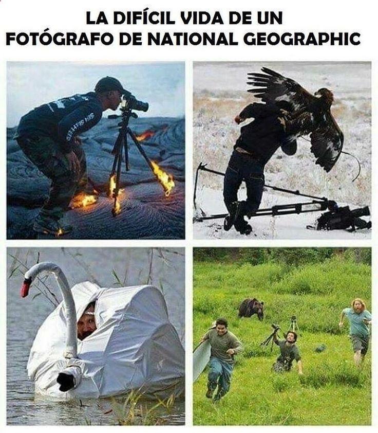 Imagenes de Humor Vs. Videos Divertidos - Mega Memeces ➬ http://www.diverint.com/memes-risa-gratis-inventando-chismes-julion-alvarez