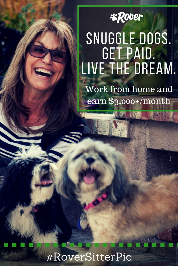 Join Rover and get paid to snuggle dogs! You could earn up to $3,000 a month offering in-home dog boarding to adorable pets who live in your neighborhood. Choose the dogs you want to watch, set your own schedule, and choose your rates. Become a Rover sitter and see what it's all about.
