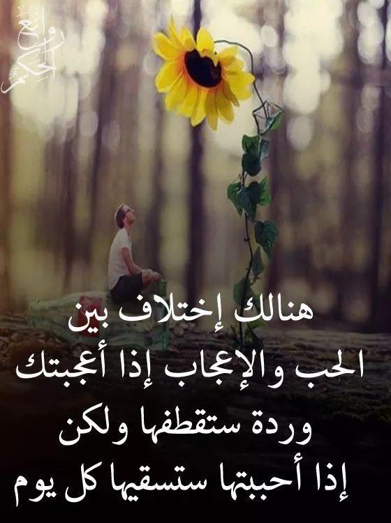 Pin By فلسطينية ولي الفخر On روائع الحكم Arabic Books English Words Arabic Quotes