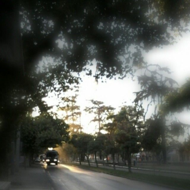 Av Colon ,San Bernado