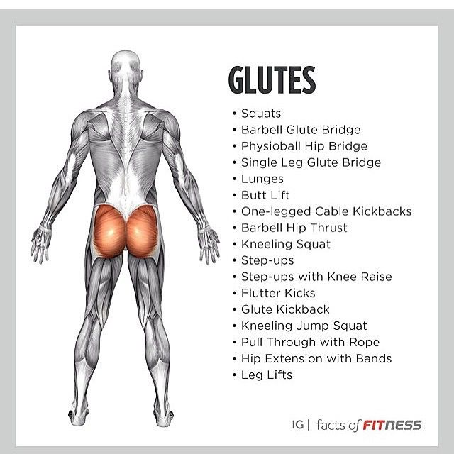 Glute target exercises