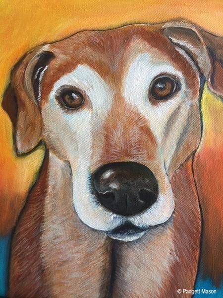 Dog portrait by animal painter Padgett Mason