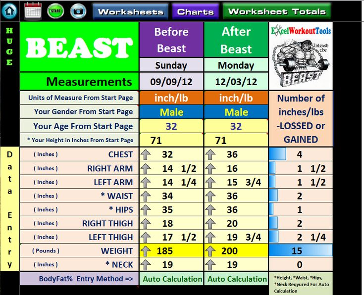 Excel Workout Tool For Body Beast  Body Beast And Workout