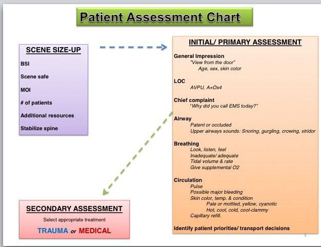 emt assesment reporting Soap patient care report this is an app to help write your medical reports in a soap format in the assessment information assessment.