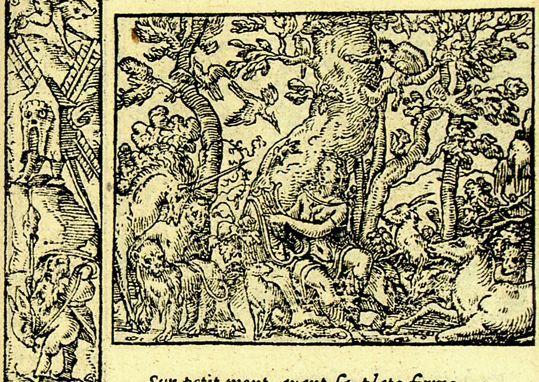 Orphée harpeur excellent (Métamorphose Lyon 1557) - Bernard Salomon