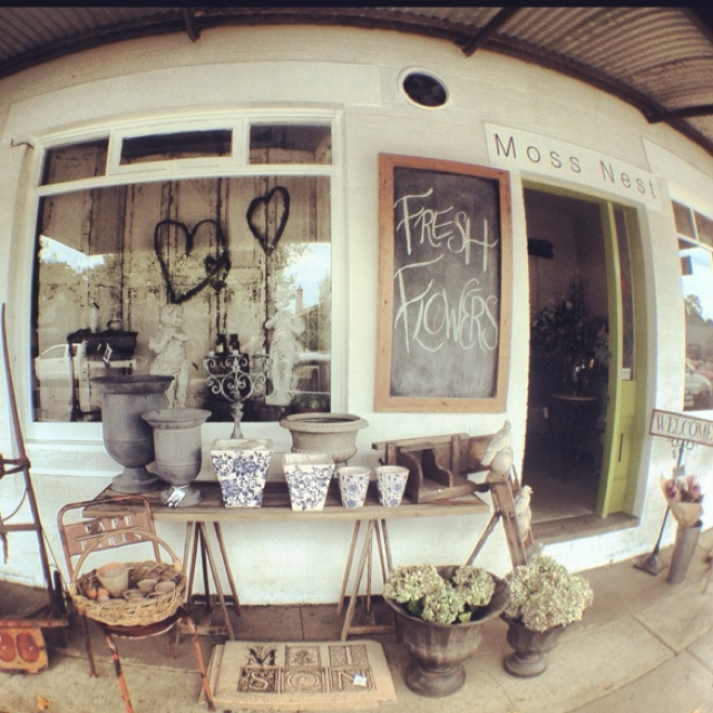 A small nice shop in a small nice country village in NSW called Berry