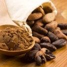 RAW CACAO BEANS, Organic or Bio , Product quality recognized as gourmet cocoa,  the highest quality by FossilsDR on Etsy