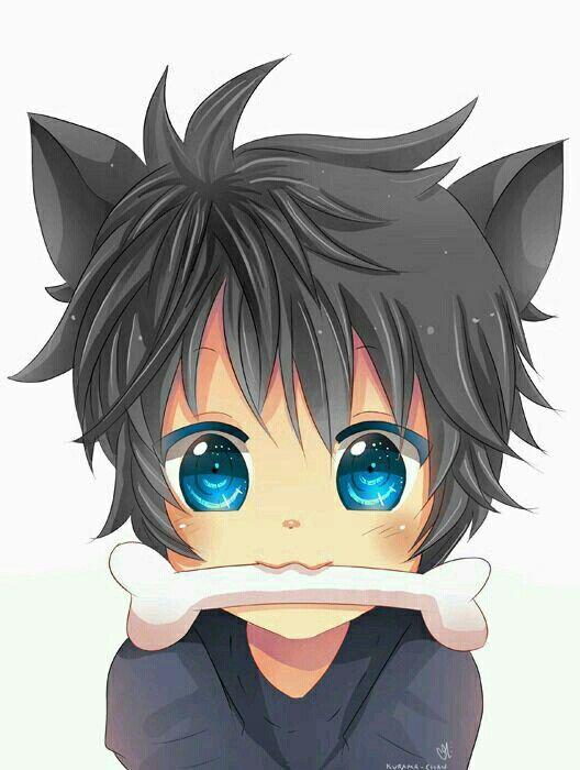 Finn Eloy Anime Chibi Neko Boy