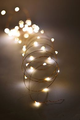Outdoor Fairy Lights  Battery Op.20 FT 60 Warm White LED Light Strings  20'ft , Copper Wire