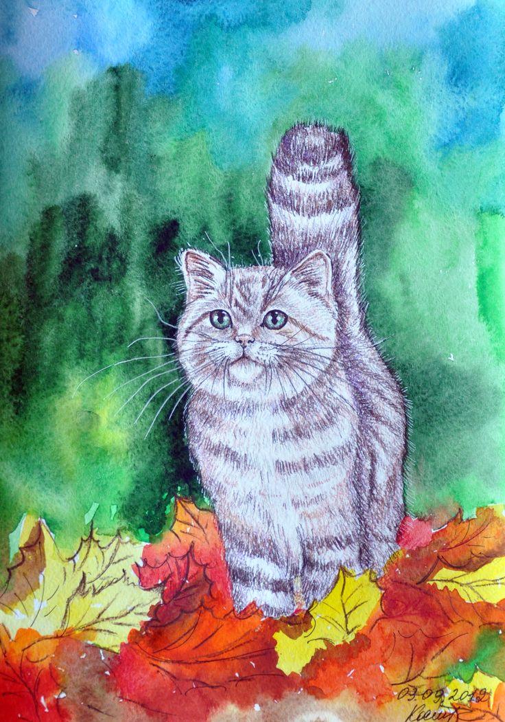 Черно белую, картинка с котом нарисованным