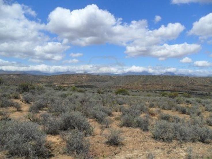 Karoo desert, South Africa