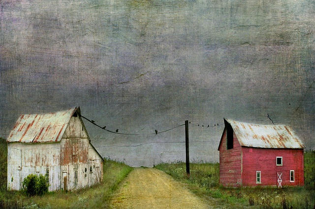 Working Neighbors by jamie heiden.