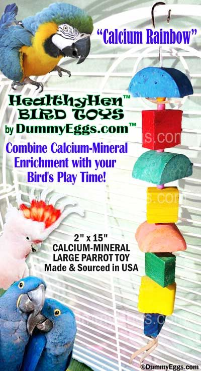 Calcium Rainbow Large Parrot Bird Toy by HealthyHen at DummyEggs.com USA made & sourced calcium-mineral block toy. Macaw Toy, Hyacinth Toy, Cockatoo Toy