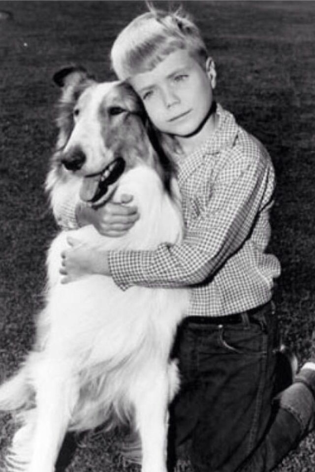 Lassie - what a cool Saturday morning show.