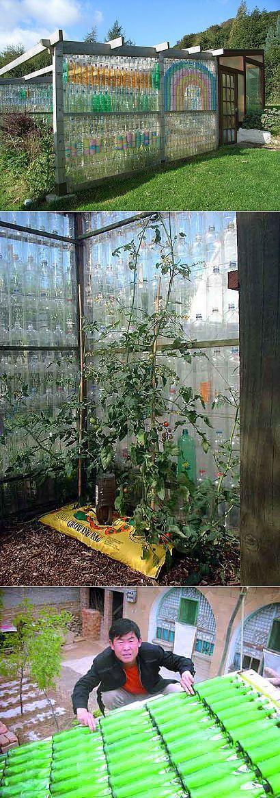 Теплица из пластиковых бутылок + солнечная батарея из стеклотары. | Сад и огород | Постила