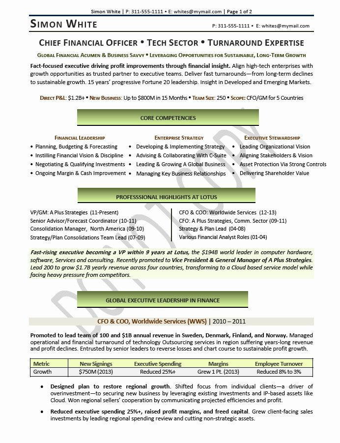 20 Chief Financial Officer Resume Executive Resume Jobs For