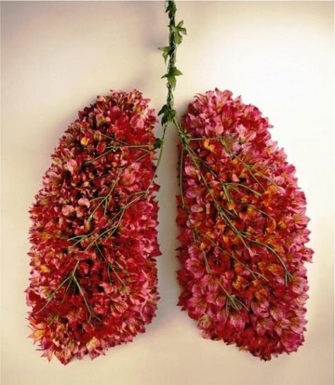 Prachtige longen #flowerpower