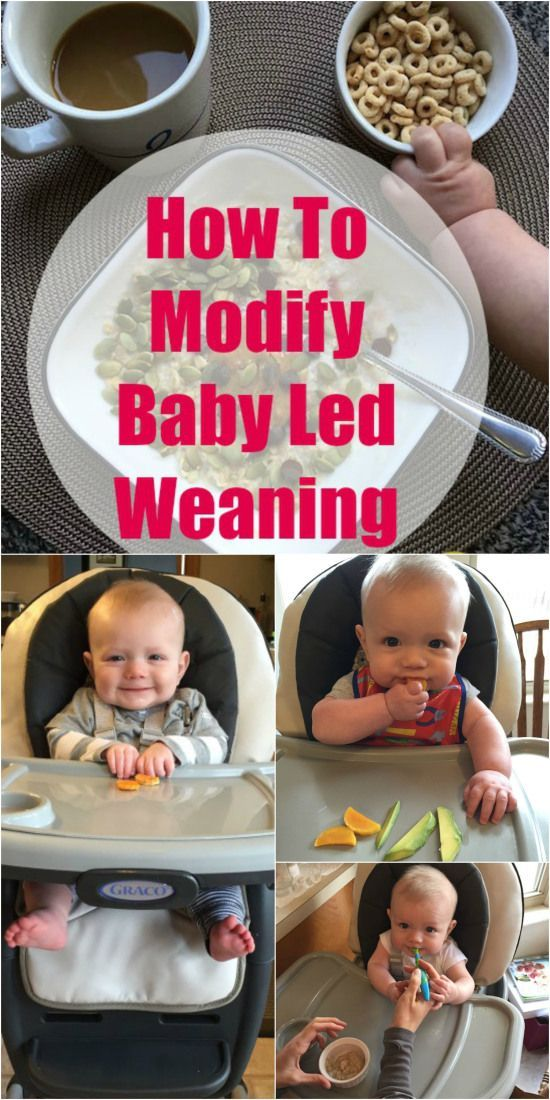 25 Best Images About Baby Led Weaning On Pinterest Baby