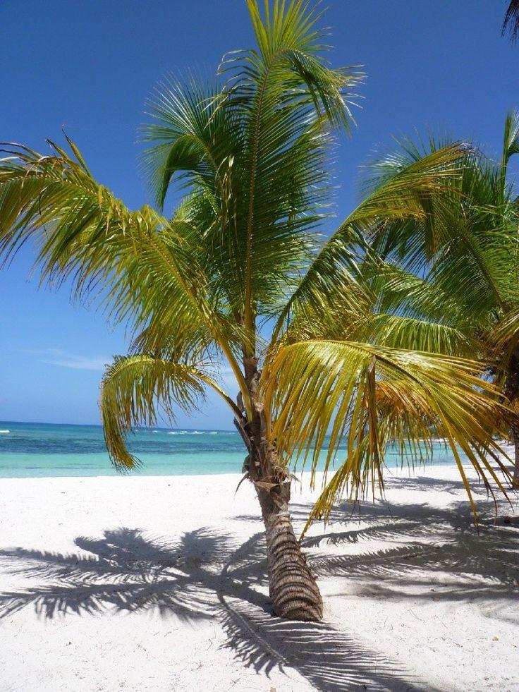 Hotel Relax Na Pláži Srí Lanky - Trincomalee/bentota, recenze hotelu, dovolená a zájezdy do tohoto hotelu na Invia.cz