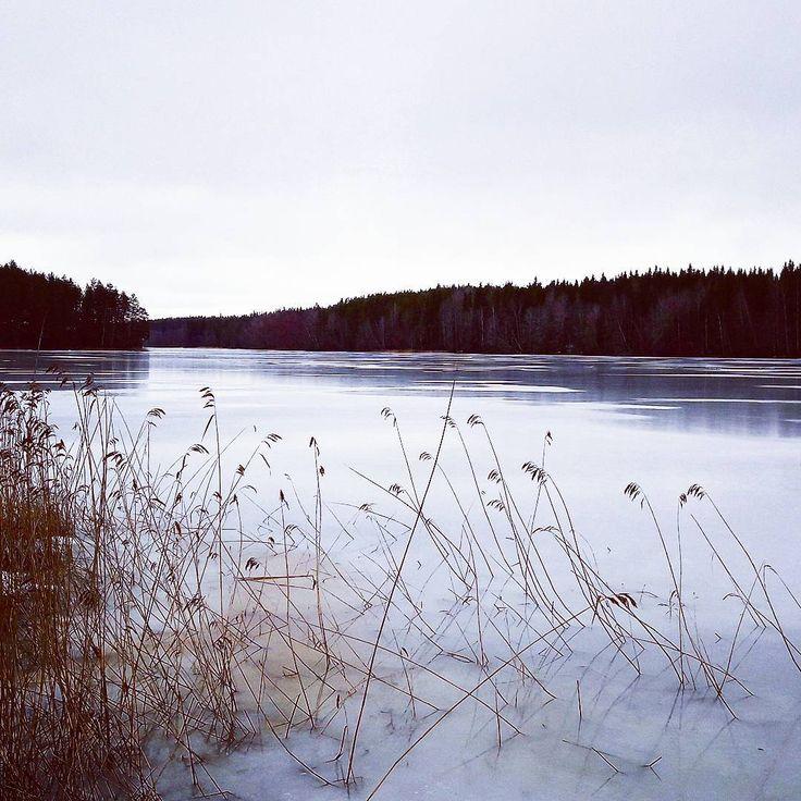 Spring - icy lake ❄ #spring #kevättalvi #icylake #ice #jää #lumi #nature #naurepic #picture #finland #finnishnature #visitfinland #photorgaph #photo #photoart #samsung #samsunggalaxya3