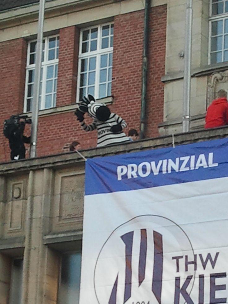 Das THW-Maskottchen Hein Daddel winkt vom Rathaus-Balkon in Kiel #Handball | Foto: Birgit Barth | Wer mag, darf das Foto gerne verwenden. Ich veröffentliche das Bild unter PD CC0 =)
