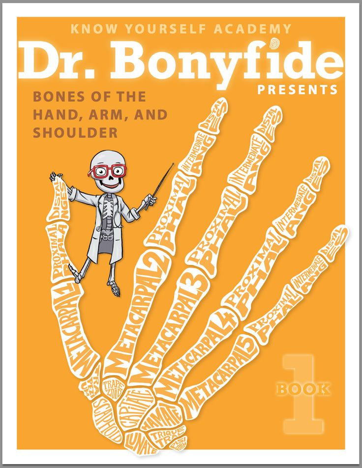 20 best know yourself anatomy book series images on pinterest bonyfide presents bones of the hand arm shoulder workbook fandeluxe Choice Image