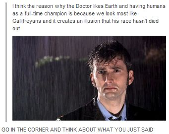 Theory about why the Doctor likes earth and humans but the Doctor preferred humans before the Time War