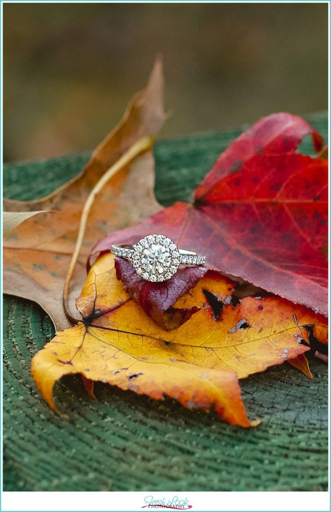 surprise wedding proposal, engagement photo shoot, engaged, she said yes, fall photo shoot, fall foliage, getting married, Miss now Mrs, engagement ring, Stumpy Lake Natural Area, Fresh Look Photography