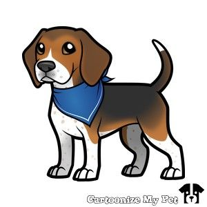 Beagle My Private Yacht Pinterest Beagle Dog And Puppys