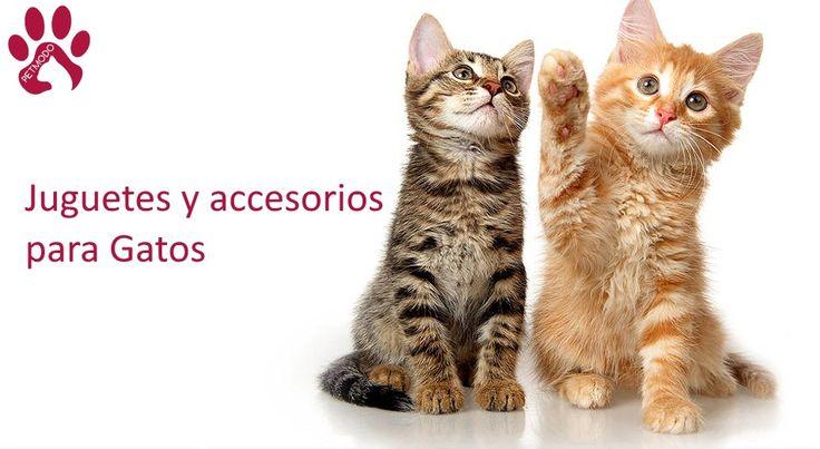 Petmodo - juguetes para mascotas