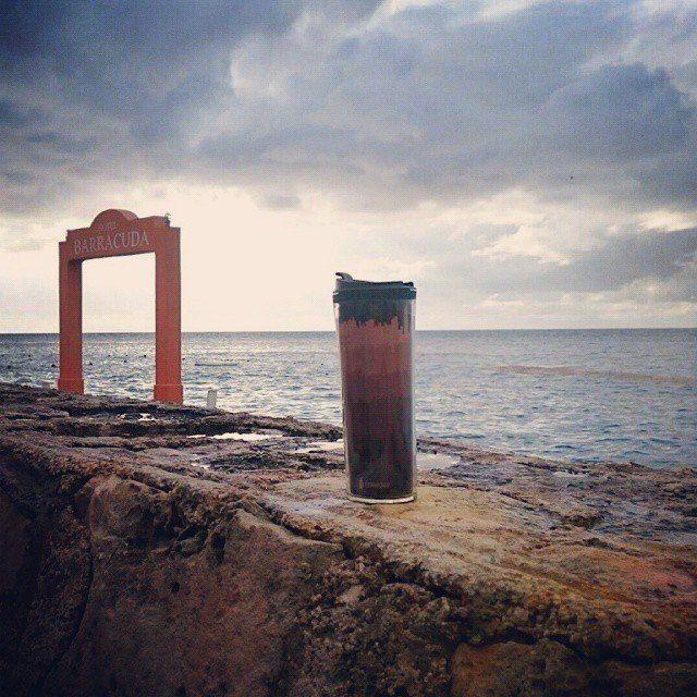 Пока стоишь на берегу волны нашептывают свои тайны, соленый ветер обнимает как закадычного друга...ты делаешь первый глоток кофе и на секунду путаешь где жизнь,где мечта...   #кофейныеПутешествия с #TermoGo только начинаются! #Присоединяйтесь