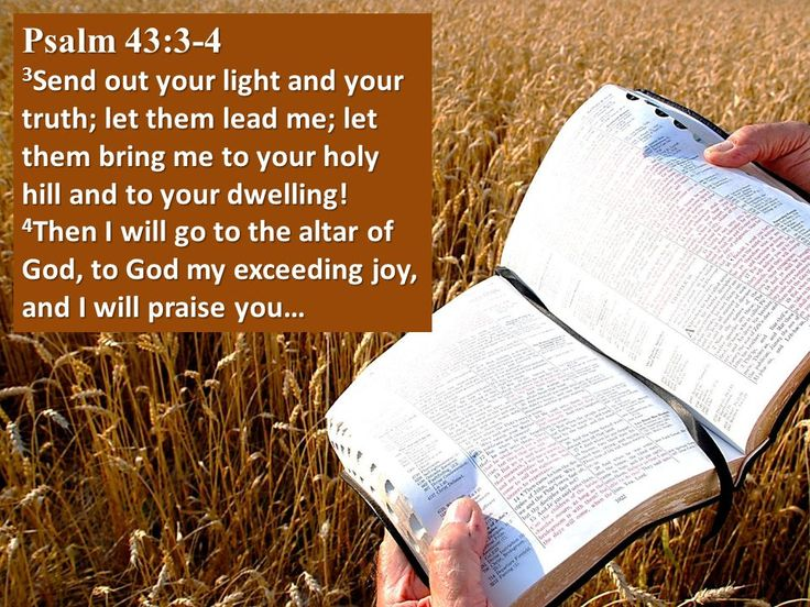 Psalm 43 | Psalm 43:3-4 3 Send out your light and your truth; let them lead me ...