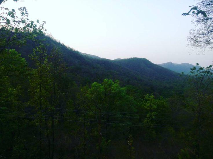 sarju Valley Latehar #latehartourism #jharkhandtourism #incredibleindia #govindpathak #velly #naturalbeauty #sarju