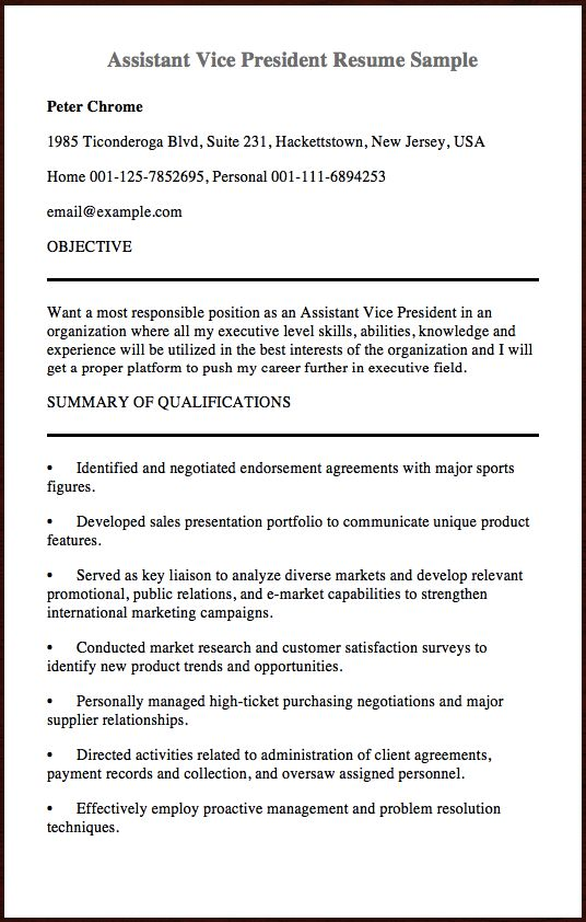 Here Is The Sample Of Assistant Vice President Resume you can