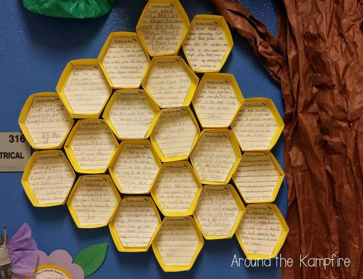 """""""Honeycomb"""" Bulletin Board About Bee Writing (from Around the Kampfire)"""