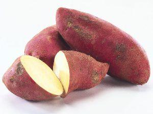 Zoete aardappel  broodwortelen, of zoete aardappelen worden geteeld voor de zetmeelrijke knol. Deze cultuur is al lange tijd in het zicht in tropische en subtropische klimaten. We hebben de subtropen, maar kunnen groeien zoete aardappelen en net ten zuiden van het land, als manoeuvreren en midden-rijpende variëteiten. Het voordeel van yam dat hij kan groeien waar aardappelen zijn vaak te wijten aan de degeneratie van massavernietigingswapens of…
