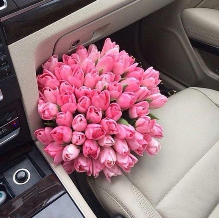 Красивые картинки тюльпаны в машине