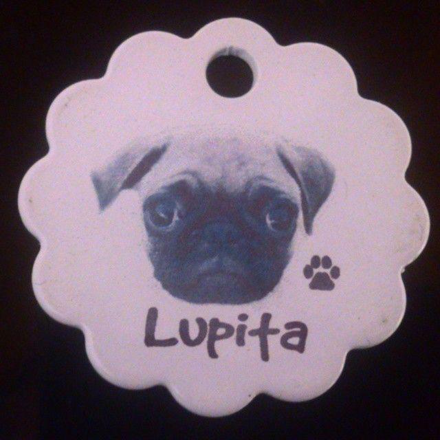 Placa para cachorros.  #PlacasParaMascotas #Gatos #Blanco #Bogota #foto #Nombre #Mascotas #Perros #Cachorros #Perritos #Pug #Colombia
