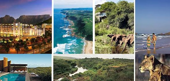 Best of South Africa | Bush And Beach Holiday Package | Cape Town ...