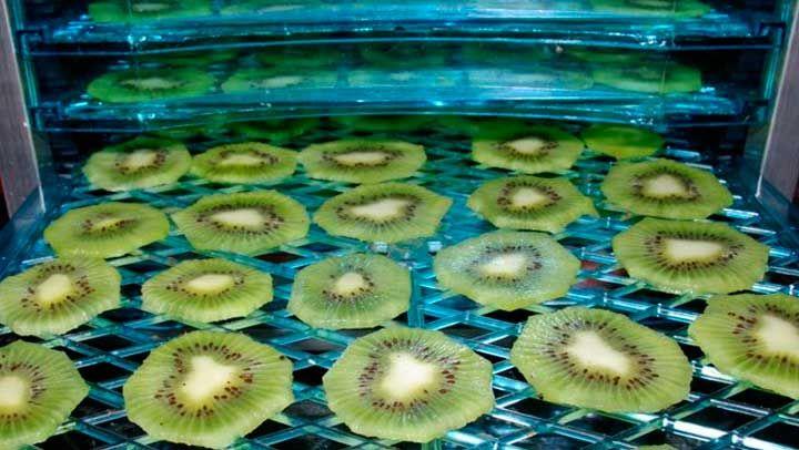 Como deshidratar fruta para conservarlas
