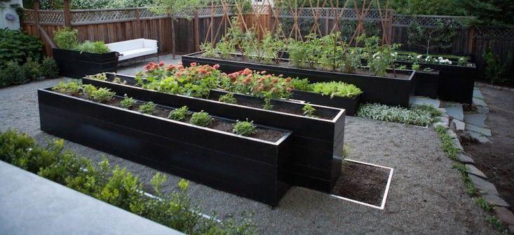 Modern potager - Finalist in Best Edible Garden Category of the 2014 Considered Design Awards, Gardenista