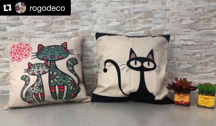 Síguenos en instagram @rogodeco ... Comunícate con nosotros en los teléfonos  300-733-83-08 / 304-546-0064 #cojines #cojingato #cat #decohome #decoracion