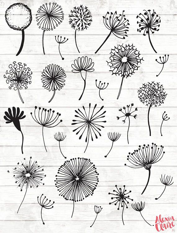 Dandelion Clipart – 28 Hand Drawn Dandelion Clock Cliparts – Seeds Clipart – Dandelion Logo Elements – Dandelion Illustration – 90