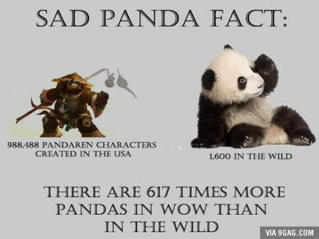 25+ best ideas about Panda facts on Pinterest | Baby pandas, Facts ...