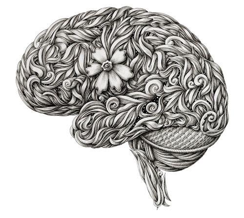 Alex Konahin Brain Cerveau Illustration