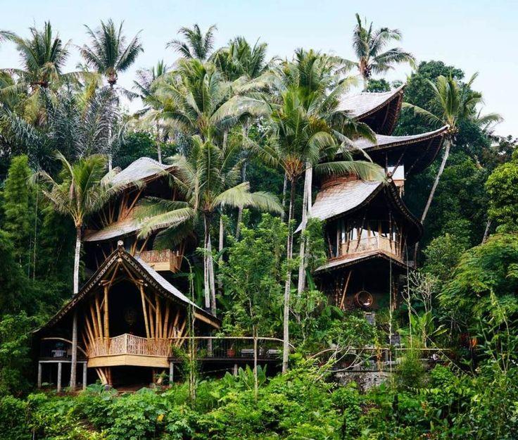 Pinterest Jungle Buildings: Best 25+ Bamboo Structure Ideas On Pinterest