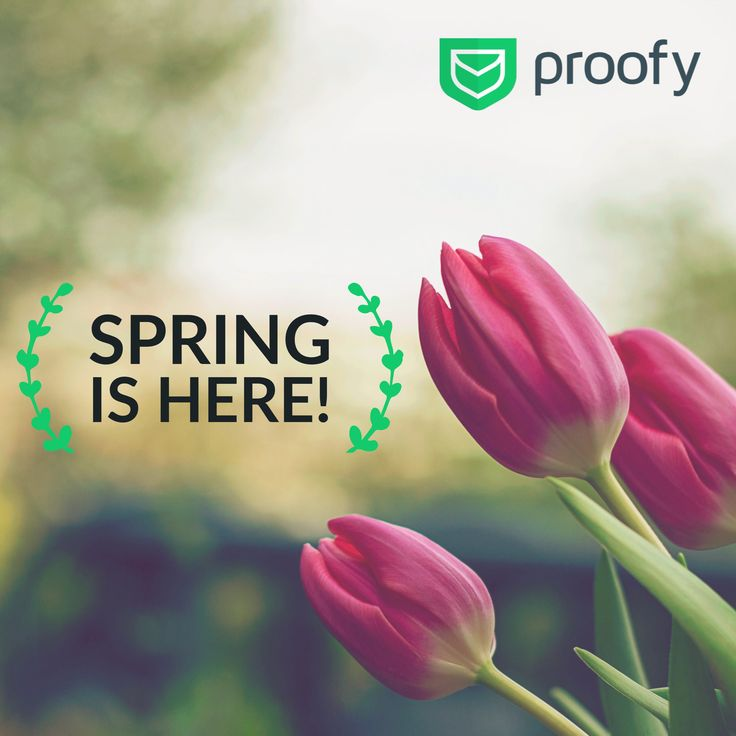 Hello, Spring! 🌷 Do you, guys, want to know more about email validation? So go to Proofy.io and learn more in our blog🗒  #enterpreneur, #goodmarketing, #marketinghelp, #startupadvice, #marketing, #validation #emailtips #b2b #email #emailmarketing #proofy #coldemail #coldemailing #sanfrancisco #spring #march #l4l #like4like #tbt