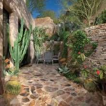 find this pin and more on desert landscaping by blancacoronel1